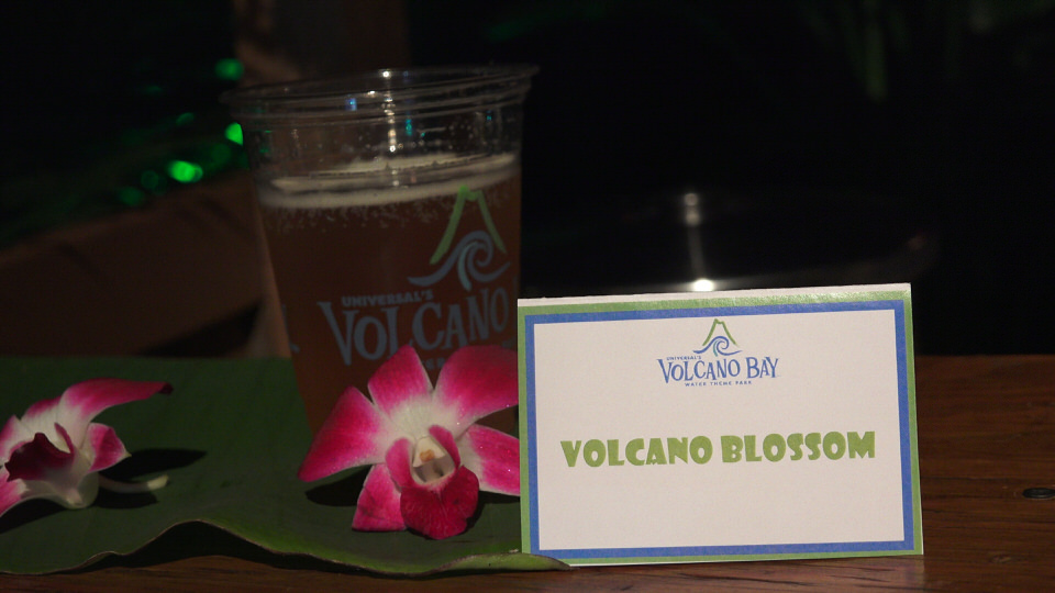 volcano-blossom-1