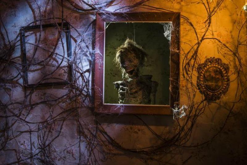 HHN17 Scarecrow2